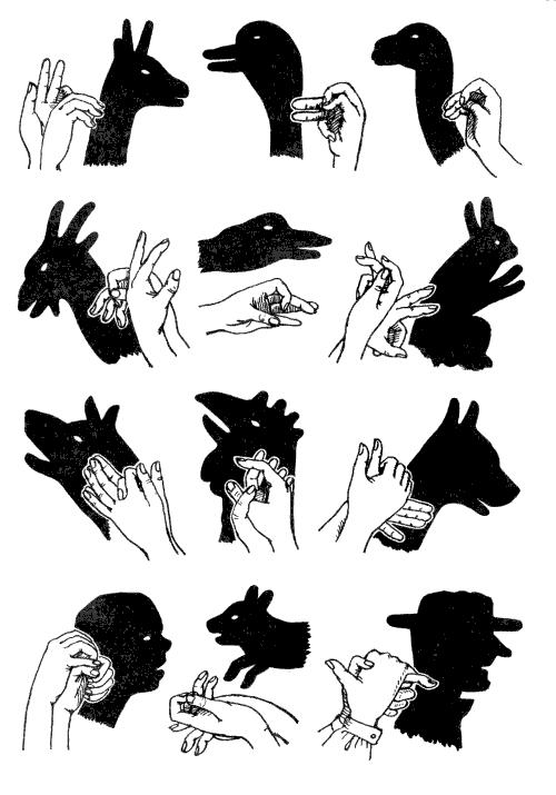 вариант для картинки тени руками в проекции на стене частное жилье